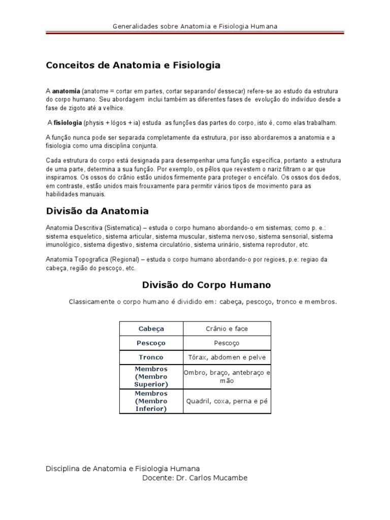 Excepcional Anatomía Y Fisiología Conjunta Fotos - Anatomía y ...