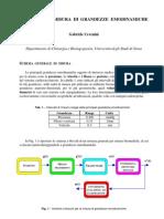 Tecniche Di Misura Di Grandezze Emodinamiche 2010-11