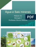 Àgua e Sais minerais