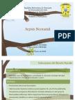 Sepsis Neonatal. Pre-Clinica Cabimas.
