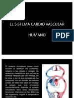 El Sistema Cardio Vascular