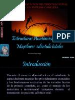 1.-Anatomia de Maxilares Edentulos