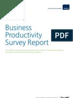 Business Productivity Report SMART