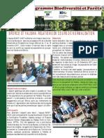 Certification forestière en RDC-Brève7