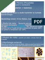 0regnulmonera_procariote