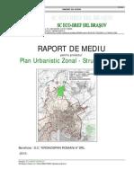 Kronospan Romania PUZ Raport Mediu Strunga Mieilor Ianuarie 2010