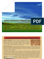 Brasil Biomassa e Energia Renovável