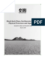 Black Rock Playa DRI Report - Physical Processes and Aquatic Life