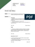 Curriculum Vitae David[2]