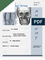 The Cranial Bone