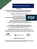 Informe Ejecutivo (Resultados Proyecto de Investigación P10105) GoNaBe 2011