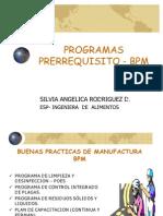 PROGRAMAS_PRERREQUISITO_-_BPM[1]