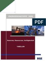 Energierohstoffe_2009_Tabellen