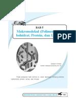 makromolekul-kls-xii