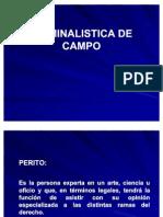 CRIMINALISTICA DE CAMPO
