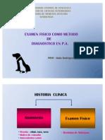 2-. EXAMEN FISICO EN PEQUEÑOS ANIMALES