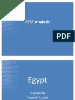60670269 Egypt PEST Analysis