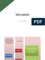 flashpatologiinflamasibelumselesai-110405084800-phpapp02