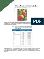Cultivo de Fresas Con Sustrato de Coco