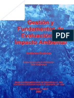 Gestion y Fundamentos de EIA 2007