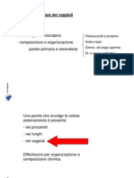 Docsity Anatomia Vegetale La Parete Cellulare Dei Vegetali