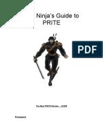 PRITE Ninja Review