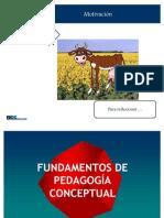 Lectores Competentes Pedagogia Conceptual