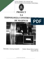 TCM II proiect