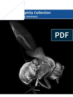 VWR Drosophila Brochure