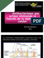 Antibióticos Elena 2010