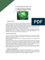 Protectia Biologica a Plantelor