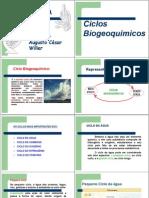 ciclos biogeoquímicos - completo