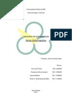 Relatório Sensor Magnético