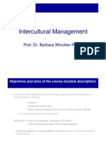 Intercultural Management 2012 Students