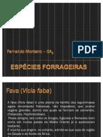 Espécies Forrageiras _ Fernando Monteiro