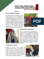 Bancada Nacionalista Gana Perú - Boletin Nº 17