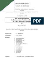 Les Bases Anatomiques des Thoracotomies Postérieures Droites ou Voie d'abord de l'Oesophage