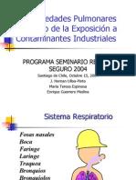 EnfermedadesPulmonaresProductodelaExposicionaContaminantes