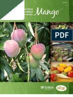 Control Calidad Post Cosecha Mango