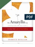 Amaryllis Way Inventory Tool - Draft 07a - Nov13-08