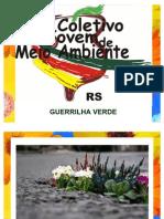 oficina guerrilha verde
