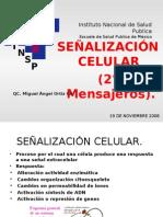 SeÑalizacion Intracelular Maog
