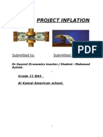 Inflation Project.