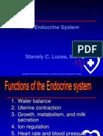 OT Endocrine System