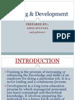 Training Development PPT