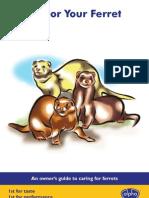 Ferret Brochure