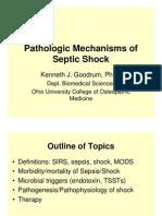 PPT Patofisiologi Septic-Shock