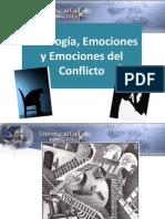 Psicologia Emociones y Sociologia Del Conflicto