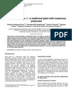 Sida Acuta Burm. f. a Medicinal Plant With Numerous Potencies