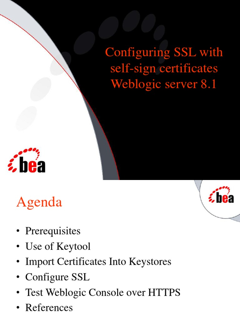 Configuring ssl with self signed certificates1 public key configuring ssl with self signed certificates1 public key certificate transport layer security xflitez Choice Image